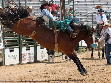 Breaking News: Rodeo is Not Like Other Sports