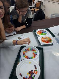 תלמידי עתודה מדעית מקיימים ניסויים