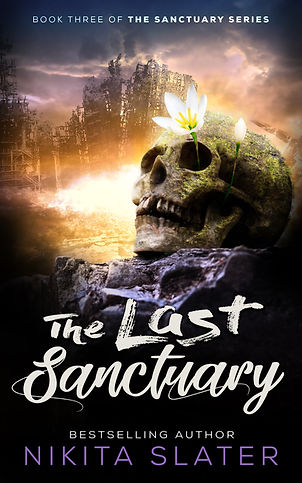 TheLastSanctuary_Cover_ebook copy.jpg