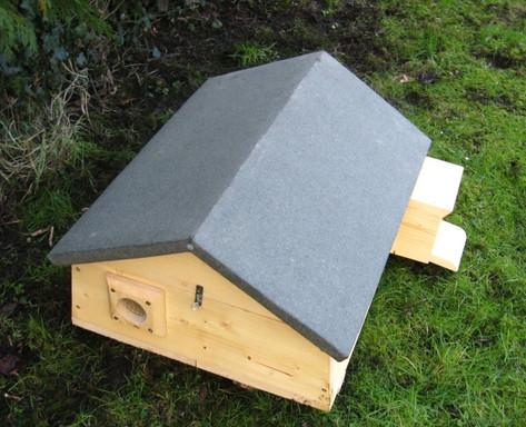 Pitched Hedgehog Box