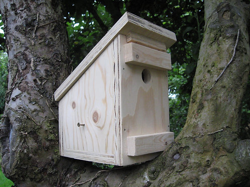 Luxury Dormouse Box