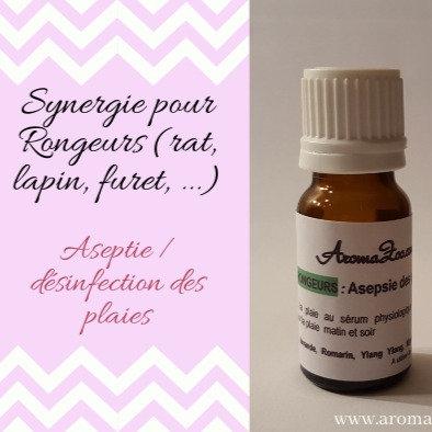 Blessure : Réparation, Régénération de la peau  - Rongeurs - Aroma/Homeo