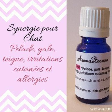 Pelade, Hot spot, teigne, irritation/allergie cutanée - Chats - Aroma/Homéo