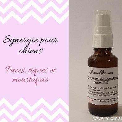 Puces, Tiques, Moustiques, Phlébotomes - Chiens - Aromathérapie