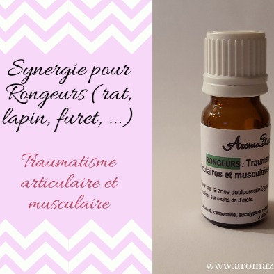 Traumatisme, Douleurs articulaires/Musculaires, arthrose - Rongeur - Aroma/Homéo