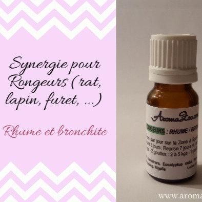 Coryza, Bronchite, Rhume et infections respiratoires - Rongeurs -  Aroma/homéo