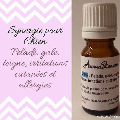 Pelade, Hot spot, teigne, irritation ou allergie cutanée - Chiens - Aroma/Homéo