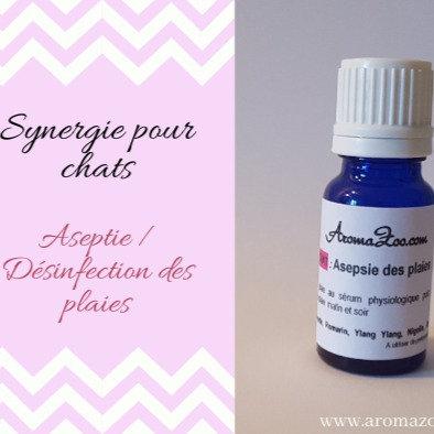 Blessure : Réparation, Régénération de la peau - Chats - Aroma/Homéo