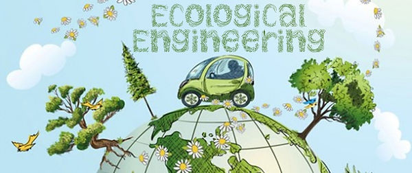 Ecological Engineering (2).jpg