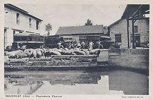 La Bresse Histoire