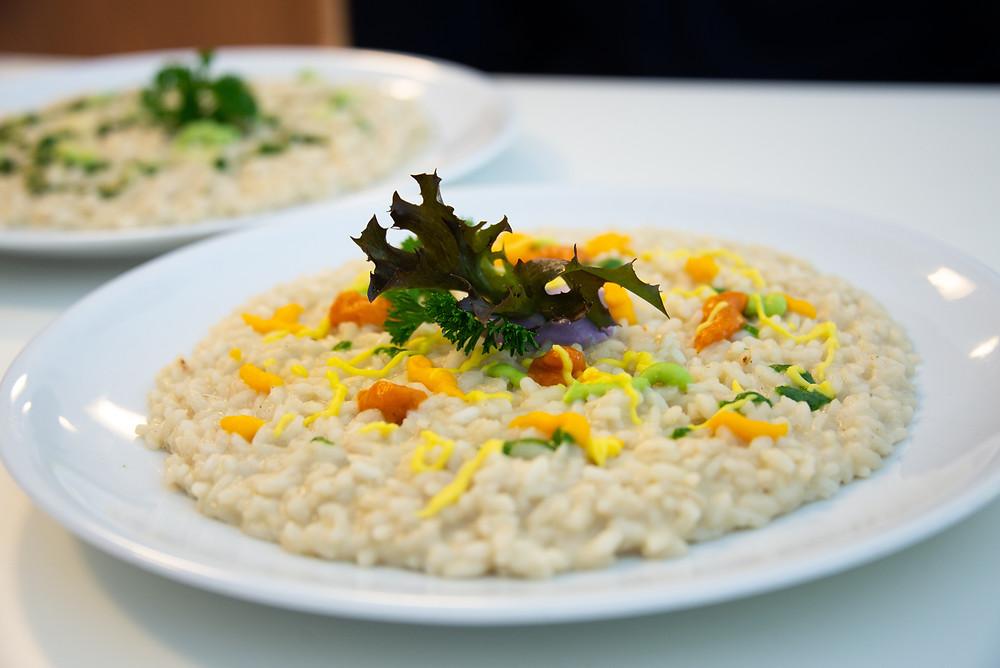 Risotto | Taste My Swiss City in Locarno