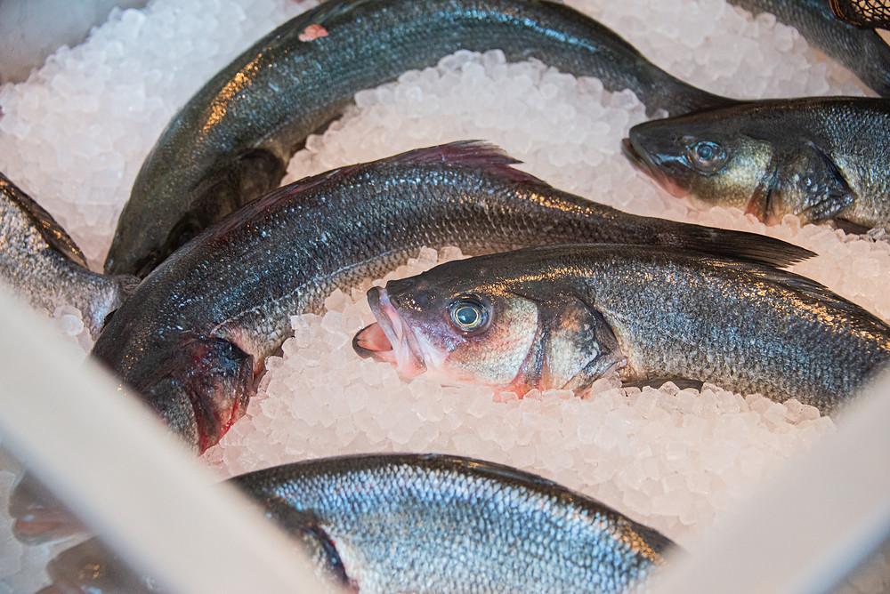 Fresh Fish @ Bianchi by Thefoodlovies