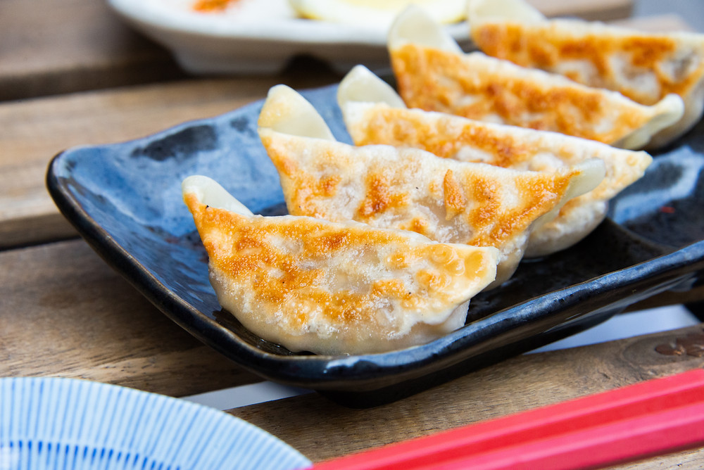 gyoza's with vegetable and tofu filling