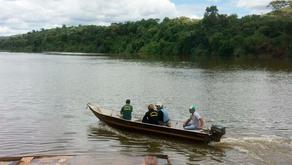 Pesca em Rio Piquiri segue proibida, mesmo após a piracema. Poluição pode ter matado 50 toneladas de
