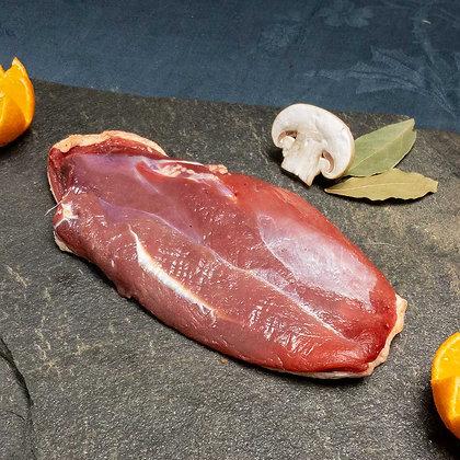 Filet de canard