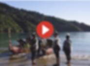 Screen Shot 2020-02-20 at 10.58.55 AM.pn