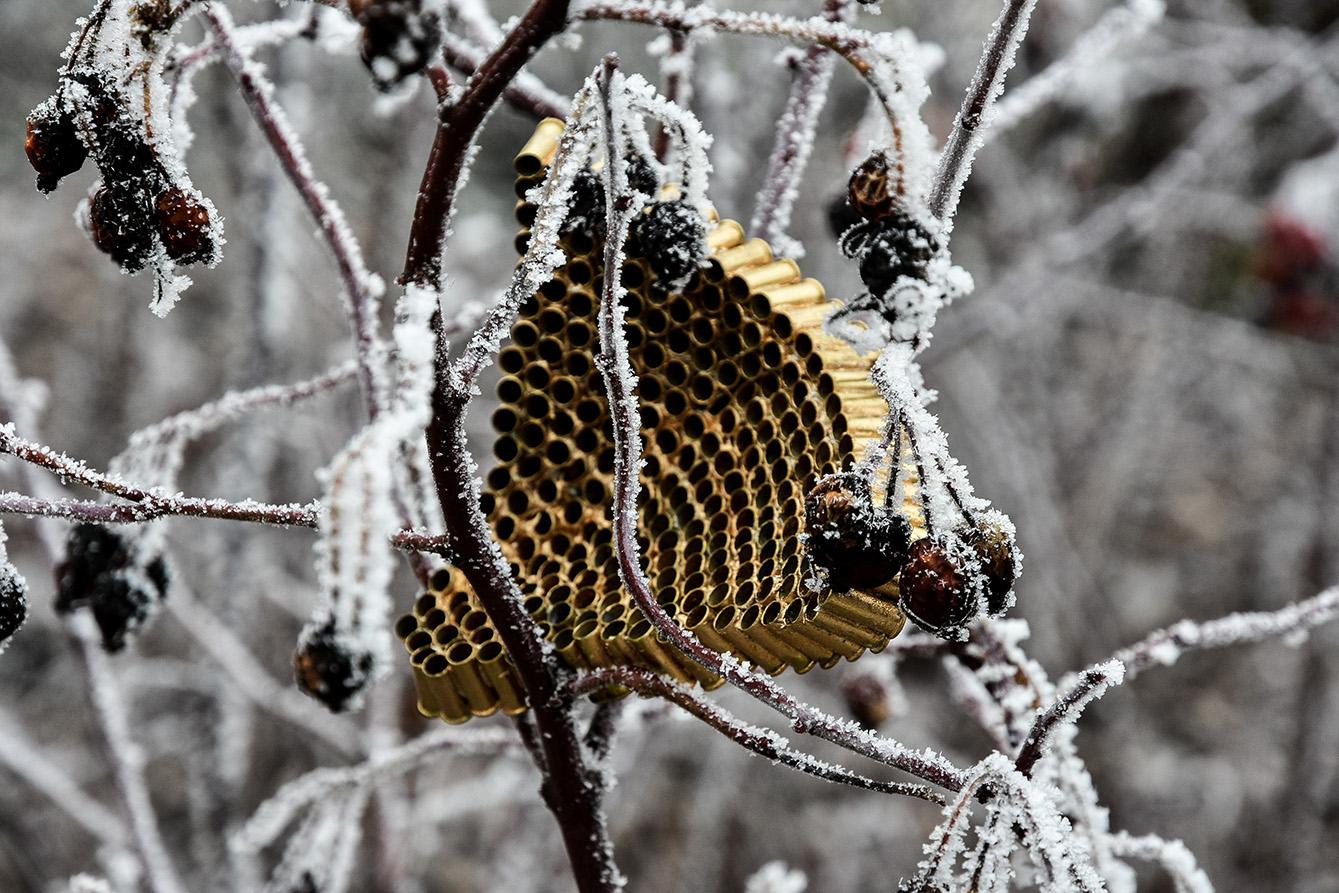 nids_snow-3922 version site