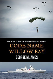Willow Bay Cover jpeg.jpg