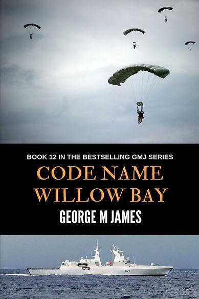 Willow Bay Cover jpeg.jpg