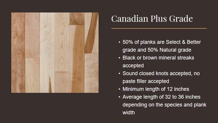 Canadian Plus.PNG