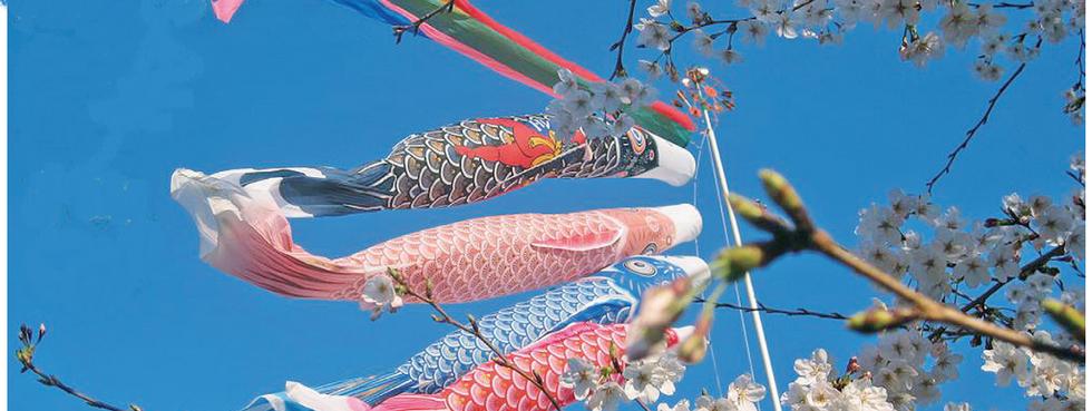 鯉のぼり3.png