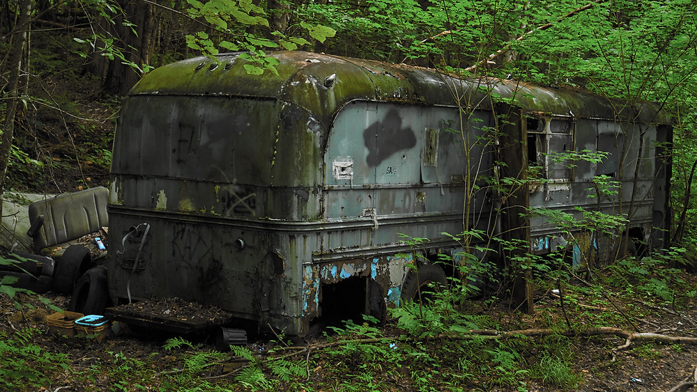 Abandoned bus nestled into an encroaching forest of lush green. Back side.
