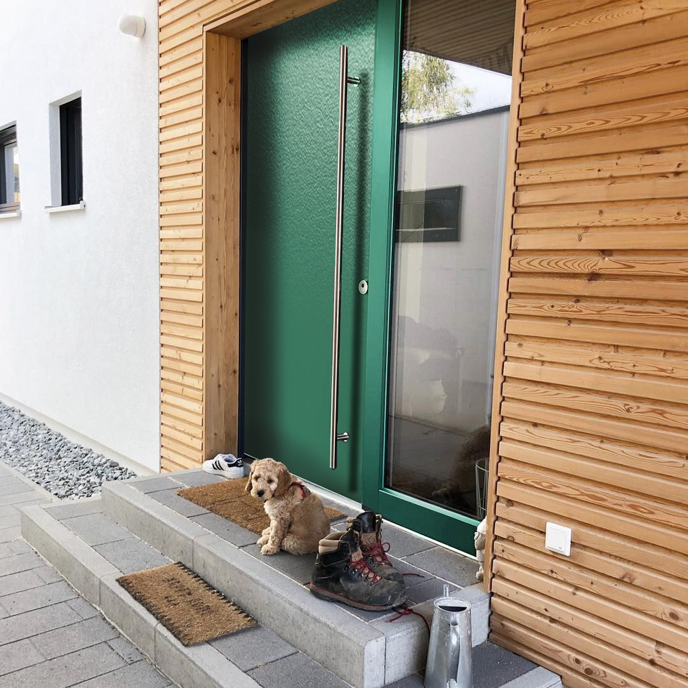 зеленая с собакой.jpg