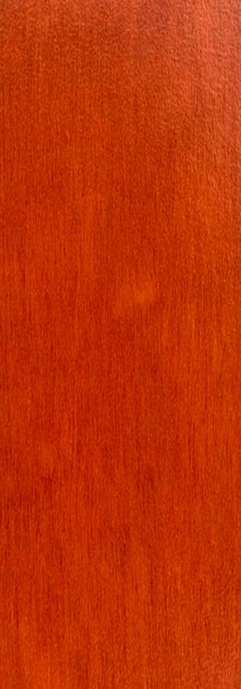 0168 NT Akro Rust.jpg