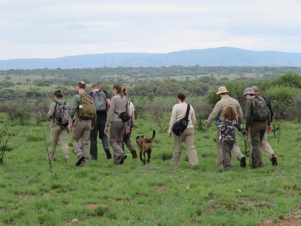 Volunteers On Bush Walk