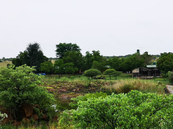 view of camp.jpg