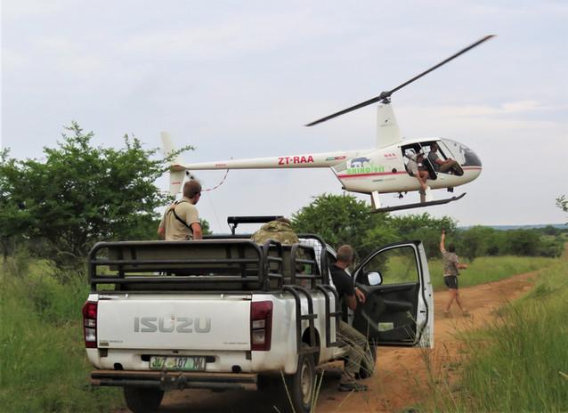 Wildlife Helicopter
