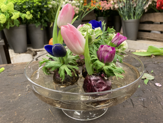 Feelgood Challenge 4 : Une fleur... un peu de printemps, une bouffée de Feelgood dans la maison