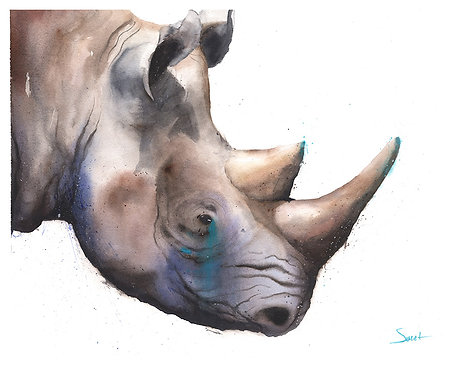 Black Rhino Watercolor Print
