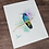 Thumbnail: Violet Eared Hummingbird Watercolor Print