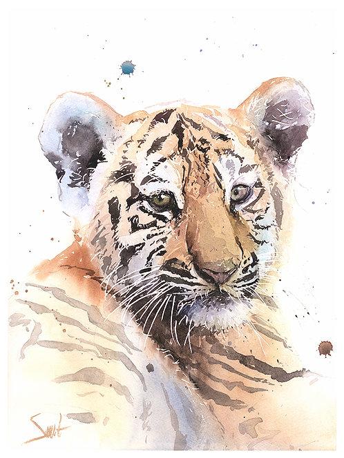 Tiger Cub Watercolor Print