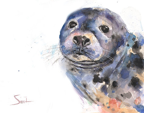 Seal Watercolor Print
