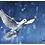 Thumbnail: Dove Watercolor Print