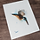 Thumbnail: Kingfisher Watercolor Print