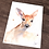 Thumbnail: Deer Fawn Watercolor Print