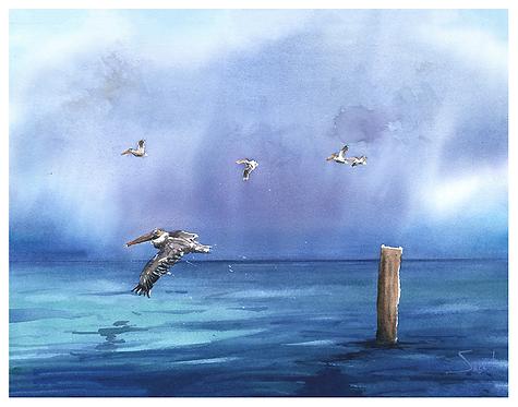Pelican Ocean Watercolor Print