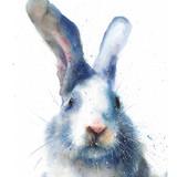 Watercolor Rabbit, 12x16, 2017