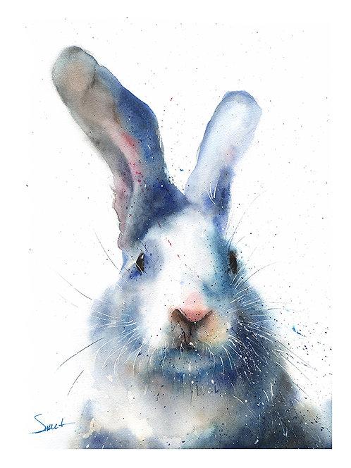 Rabbit Watercolor Print