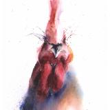 Watercolor Chicken, 11x14, 2017