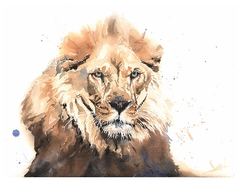 Roman Lion Original Watercolor Painting