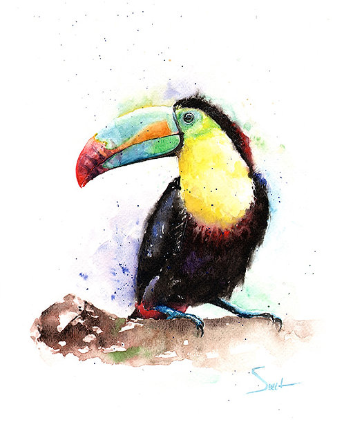Rainbow Toucan Watercolor Print