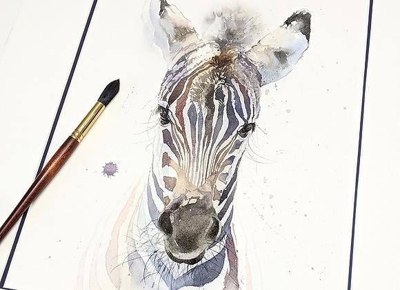 Zebra Colt Original Watercolor