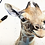 Thumbnail: Giraffe Calf Watercolor Print