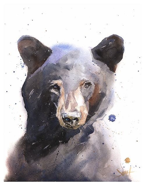 Black Bear Watercolor Print