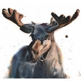 Moose Watercolor