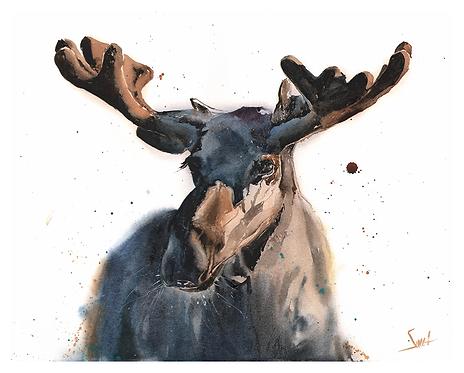 Moose Original Watercolor Painting